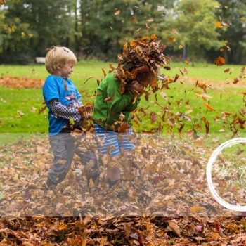 Mel Hudson Family Photography Belfast, 2 young boys playing in the leaves